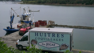 Offloading the afternoon's catch of oysters