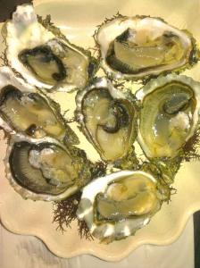 Yvonnick Jégat's oysters (carelessly shucked :()!